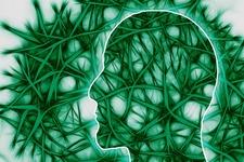 脳波を読み、麻痺手の神経回路回復を図るリハビリ機器を開発