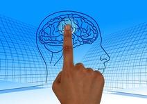【今すぐ押したい】脳内のやる気スイッチを発見 慶應義塾大学