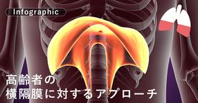 高齢者の横隔膜に対するアプローチ【インフォグラフィックで解説】