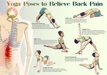 腰痛に効果的なヨガのポーズ(アーサナ)6選をまとめてみる