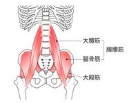 腸腰筋(腸骨筋)の評価(トーマステスト)と筋トレ、ストレッチ