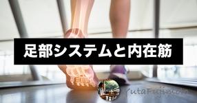 足部システムと内在筋