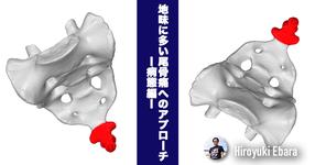 地味に多い尾骨痛へのアプローチ~病態編~