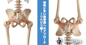 地味に多い尾骨痛へのアプローチ~リハビリ編~