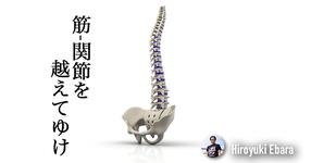 筋・関節を越えてゆけ!~筋骨格系疼痛に対する信念と態度その5~