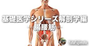 基礎医学シリーズ解剖学編―腸腰筋―