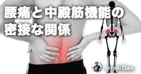 腰痛と中殿筋機能の密接な関係