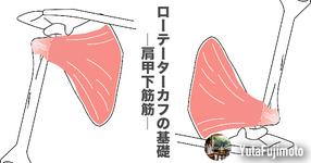 ローテーターカフの基礎―肩甲下筋編―
