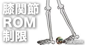 【膝関節可動域制限】膝蓋上嚢の基礎
