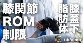 【膝関節可動域制限】膝蓋下脂肪体の基礎