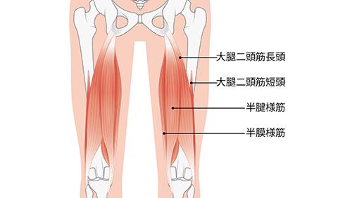痛い ハム ストリング ハムストリングスの痛みや張りの原因と治療